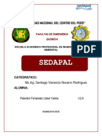 SEDAPAL- INFORME-FINAL.docx