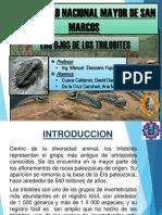 Informe Ojos de Los Trilobites
