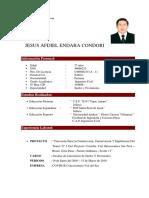Curriculum Jesus Endara.doc