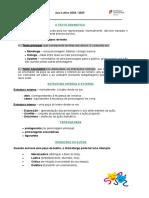 O TEXTO DRAMÁTICO - ficha inform.doc
