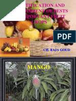 Mango, Citrus, Grape and Coconut