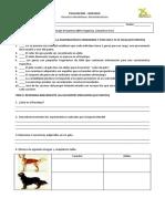 Evaluación - Monohibridismo.docx