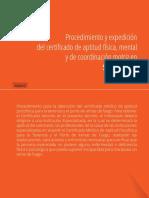 Procedimiento-armas.pdf