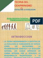 teoria 3.pptx