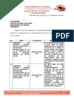Informe de Inspeccion