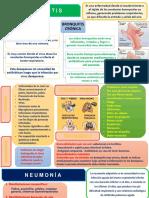 Bronquitis y Neumonia