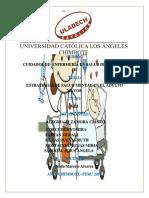 Grupo E_estrategias Sanitarias