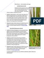 Wheat Diseases - short descriptions and images.pdf