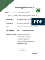 programacion-de-la-produccion-agricola-cultivo-de-palto.docx
