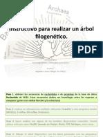 143321024 Como Realizar Un Arbol Filogenetico