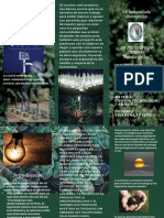Forest Green Plants Product Trifold Brochure.pdf
