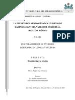 García Martín, E. (2017)_La flexión del verbo hñähñu.pdf