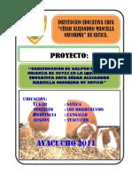 APUNTES DE CLASE, CUYES.docx