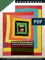 Universidad Intercultural.pdf
