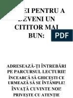 REGULI DOAMNA RADOI.docx