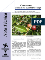 40bc7f2d-14db-4582-bc91-8f47c7951bb4_Nota_Técnica_04.pdf
