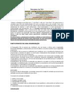 Apostila Teoria Geral da Administração.docx