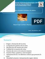 Guiaextraccionsanguinea 101110095855 Phpapp01 (1)