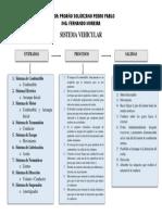 SISTEMA VEHICULAR.docx