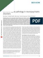 Penzes (2011) - Dendritic spine pathology in neuropsychiatric disorders.pdf