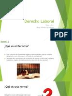 Derecho Laboral Temas 1-2-3