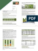 Boletín Exportaciones Del Rubro Ovino (Abril 2019)