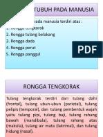 Monica Astari Manurung (4163341036)