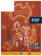 Declaration on the Rights of Indigenous People