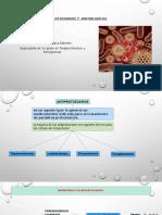 antiprotozoarios_y_antipal_dicos.pptx;filename_= UTF-8''antiprotozoarios y antipalúdicos-1