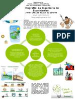 Infografia Ingenieria de Los Ecosistemas