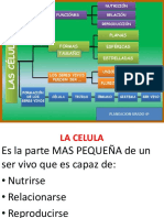 01 Celula.pptx