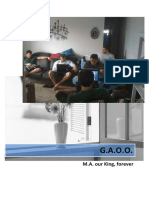 GAAO - master.pdf