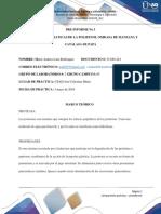 PRE-INFORME No 3 REACCIONES ENZIMATICAS DE LA POLIFENOL OXIDASA DE MANZANA Y CATALASA DE PAPA