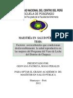 tesis salud publica (1).pdf
