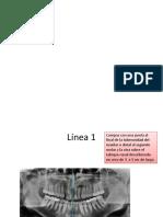 Analisis de Levandosky