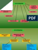 b. Fitoterapia