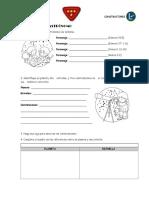 Especialidad Astronomo PDF