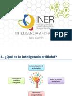 IA INER