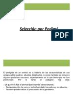 3.1. Sleccion por pedigri.pdf