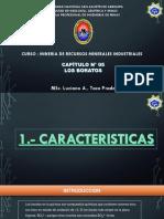 CAPÍTULO N° 05 - LOS BORATOS