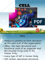 2.Cell PDMA