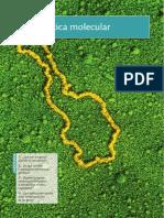 genetica molecular.pdf