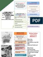 Leaflet-Sinusitis Fx