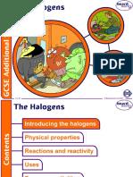 13. the Halogens v1.0