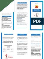 TRIPTICO-maestria.pdf