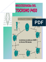 citocromoP_450.pdf
