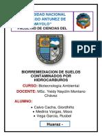 TRABAJO DE INVESTIGACION- BIORREMEDIACION DE SUELOS CONTAMINADOS POR HIDROCARBUROS.docx