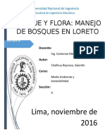 Proyecto, Bosques.docx