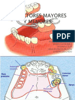 Critical Horizontal Dimensions of Interproximal and Buccal Bone Around Implants for Optimal Aesthetic Outcomes. a Systematic Review-convertido.en.Es