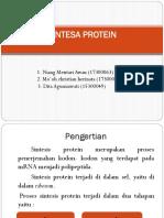 Sintesa Protein